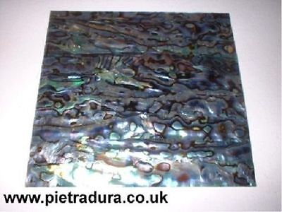 Abalone / Paua Shell Veneer Laminate 4 Luthier Inlay 90 x 90 mm