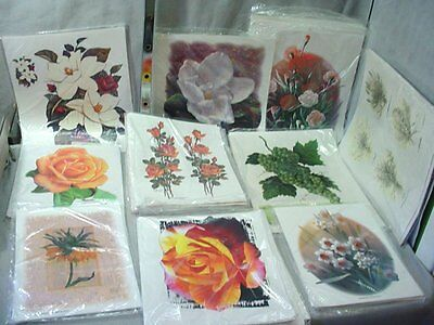 Lot of 288 Heat Press Shirt Transfers Flower & Plant Themes 10 Different