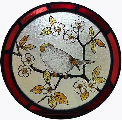 Beautiful English Victorian Painted Bird In Blossom Stained Glass Roundel