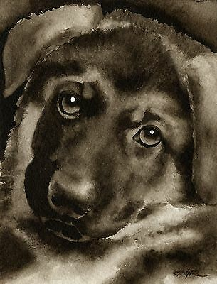 GERMAN SHEPHERD PUPPY note cards by watercolor artist DJ Rogers