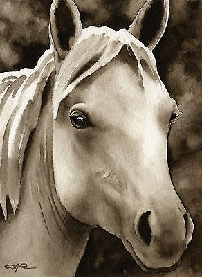 HORSE note cards by watercolor artist DJ Rogers