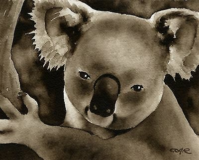 KOALA note cards by watercolor artist DJ Rogers