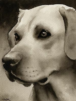 LABRADOR RETRIEVER note cards by watercolor artist DJ Rogers