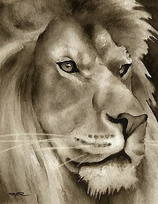 LION note cards by watercolor artist DJ Rogers