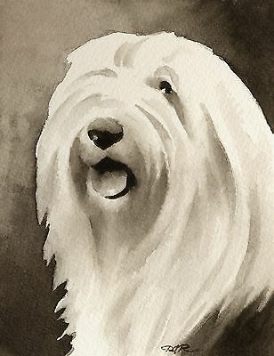 OLD ENGLISH SHEEPDOG note cards by watercolor artist DJ Rogers