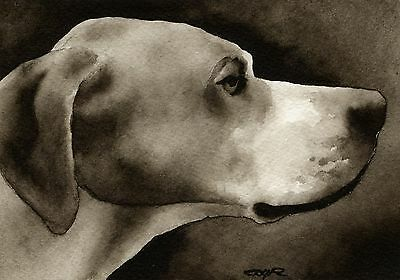 POINTER note cards by watercolor artist DJ Rogers