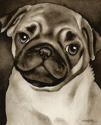 PUG PUPPY note cards by watercolor artist DJ Rogers