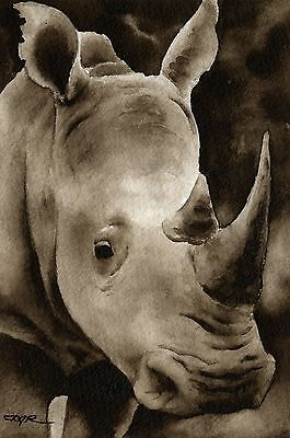 RHINO note cards by watercolor artist DJ Rogers
