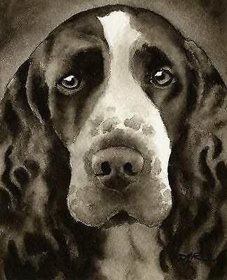SPRINGER SPANIEL note cards by watercolor artist DJ Rogers