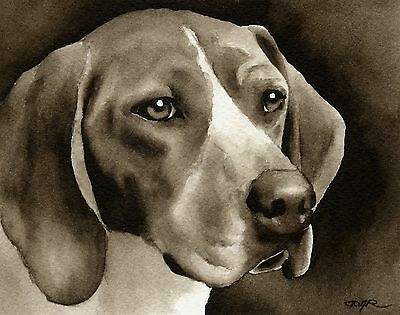 TREEING WALKER COONHOUND note cards by watercolor artist DJ Rogers