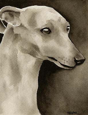 WHIPPET note cards by watercolor artist DJ Rogers