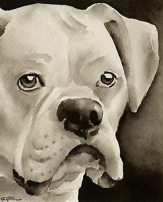 WHITE BOXER note cards by watercolor artist DJ Rogers