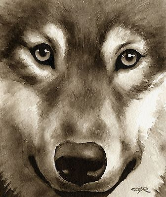 WOLF note cards by watercolor artist DJ Rogers