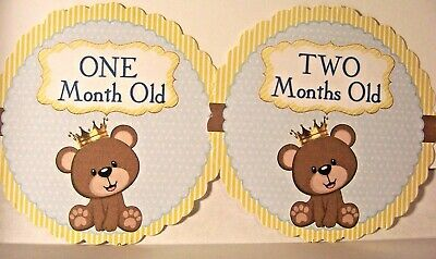 BABY Milestone 1-12 month Growth Photo Cards-Handmade-,TEDDY BEAR