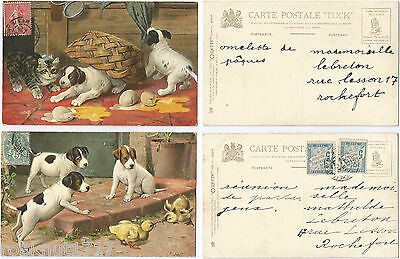 LOT 2 CPA illustrateur Cobbe Oilette Tuck ANIMAUX chiot poussin chaton [834 A]