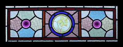 Stunning English Painted Spring Daffodil Antique Stained Glass Window