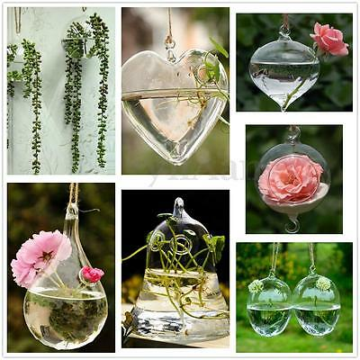 Hanging Glass Grow Flower Plant Vase Hydroponic Container Pot Home Decoration