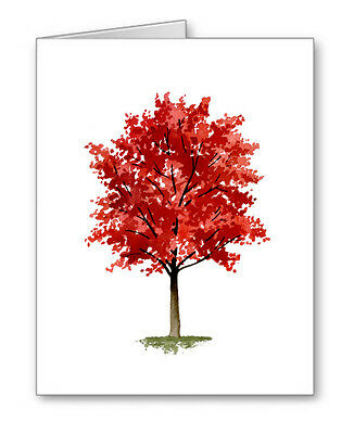 MAPLE TREE Note Cards With Envelopes