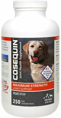 Cosequin DS Plus MSM For Dogs (250 Chewable Tablets), 04/2022, Fast Ship