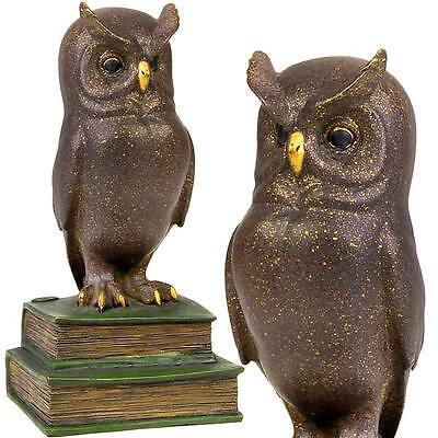 BRONZE EULE auf BÜCHERN, VOGEL FIGUR - Cold Painted BRONZE 'WISE OWL on BOOKS'