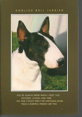 Bull Terrier Photo Card  Postcard Size  with a Verse