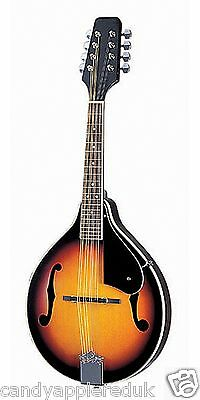Delta Blue Am10E Electric Mandolin - Ships From Ireland