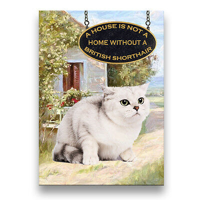 BRITISH SHORTHAIR CAT A House is Not a Home Fridge Magnet No 2