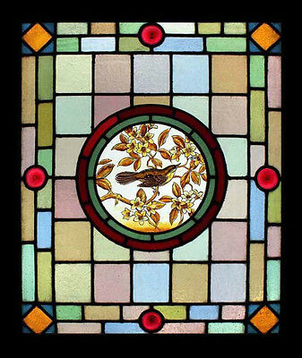 Victorian Painted Bird In Blossom Tree Antique English Stained Glass Window