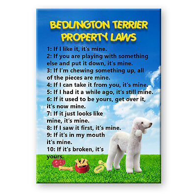 Bedlington Terrier Property Laws FRIDGE MAGNET Funny