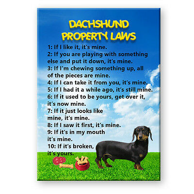 DACHSHUND Property Laws FRIDGE MAGNET No 2 Doxie Steel Cased