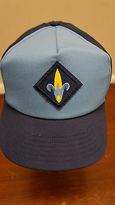 Vintage Weeblos Boy scouts snap back hat BSA collectable blue USA