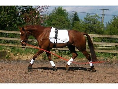 EquiAmi Standard Combi Aids. Equi Ami Lunge & Riding Aids to fit 13hh - 17hh BN