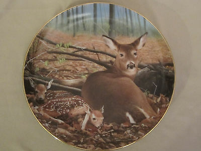 FRESH START collector plate BOB TRAVERS Wildlife WHITE TAILED DEER Fawn