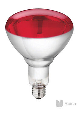 10 Trempé INFRAROUGE LAMPE INFRA ROUGE EMETTEURS Philips 150 W