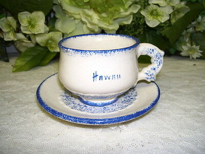 Vintage Demitasse Cup And Saucer Blue And White From Hawaii