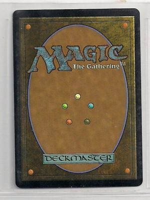 MAGIC Lotto 20 Carte TERRE BASE Foresta Foreste