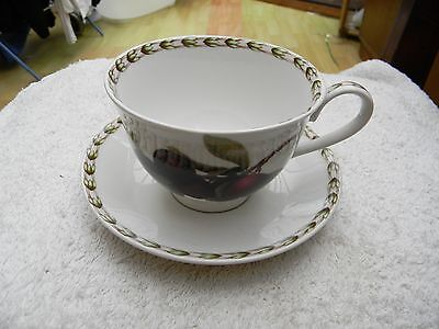 Queens ' Hookers Fruits ' Teacup And Saucer
