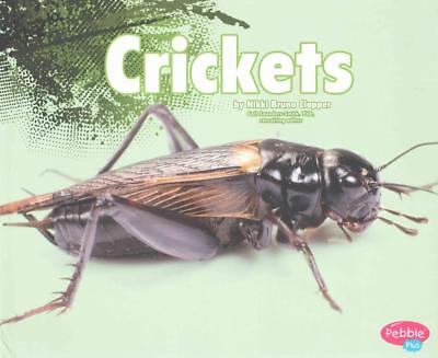 Crickets by Nikki Bruno Clapper (English) Library Binding Book Free Shipping!