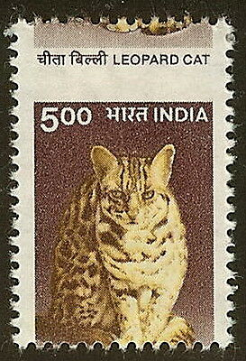 "India 1825 - 5r Huge Misperf Error / EFO ""Leopard Cat"" Mint NH"