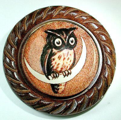 Large Glass Dome Button Set in Carved Wood  Owl Perched on Moon 1 & 5/8""