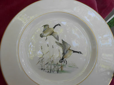 Pickard Game Birds Bread Plates 2 Goose Geese Gold Cattails Pic4