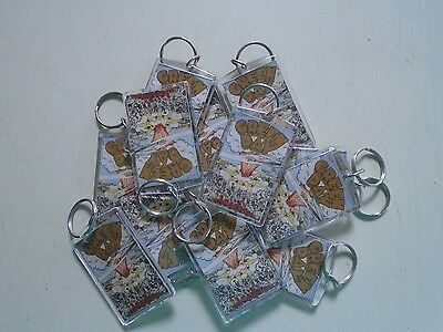 Green Day - Dookie - Huge lot 12 Original Vintage Keyrings / Exc. new cond. 2x4""
