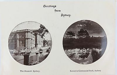 Very Nice Early 1900'S Postcard. Greetings From Sydney. Museum & Centennial Park