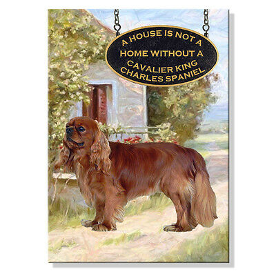 CAVALIER KING CHARLES SPANIEL a House Is Not A Home FRIDGE MAGNET No 4