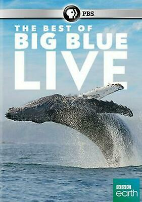 The Best of Big Blue Live - DVD-STANDARD Region 1 Free Shipping!