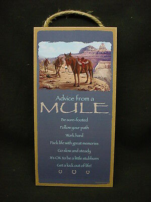 ADVICE FROM A MULE Wisdom Love wood 10 X 5 SIGN wall HANGING PLAQUE pack animal