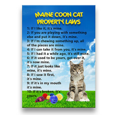 MAINE COON CAT Property Laws Fridge Magnet No 4 Funny
