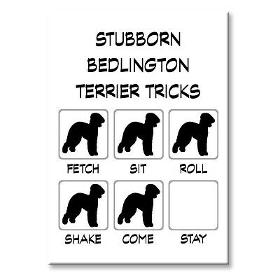 BEDLINGTON TERRIER Stubborn Tricks FRIDGE MAGNET Steel Case Funny