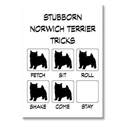 NORWICH TERRIER Stubborn Tricks FRIDGE MAGNET Steel Case Funny