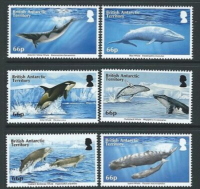 British Antarctic Territory 2015 Whales Unmounted Mint, Mnh